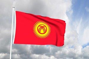 Птицефабрики Кыргызстана оказались на грани закрытия