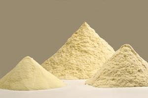 Насекомые могут стать важным источником аминокислот для комбикормов