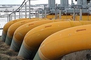 В Рязанской области полгода незаконно работал завод кормов для животных