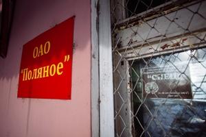 Банкротство «Поляного», где голодали элитные коровы, продлили на полгода