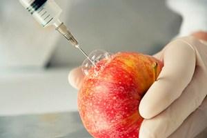 В США запущен сервис проверки продуктов на ГМО