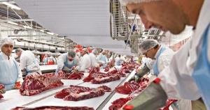 В Новой Зеландии проводят испытание экзоскелета для мясопереработчиков