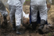 Чума свиней продолжает шагать по Китаю: три новые вспышки за сутки