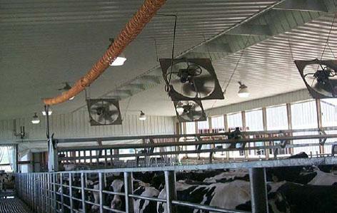 Вентиляторы  ферм и коровников