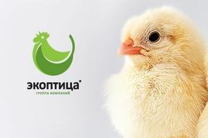 «Экоптица» весной откроет крупное производство полуфабрикатов