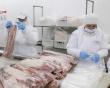 Производство свинины в России достигло 4,9 млн тонн