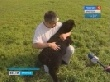 В Нукутском районе фермер занимается возрождением элитной породы овец