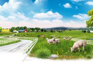 Французские фермеры начали продавать туры на фермы из-за нехватки денег