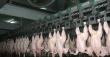 Отменены ограничения на транзит мяса птицы через Россию в Казахстан
