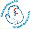 Балашовская птицефабрика