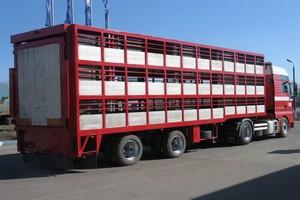 Минсельхоз предложит освободить от дорожного сбора молоковозы и скотовозы