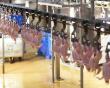 В России производство мяса птицы в январе снизилось на 3,8%. Сказались низкие цены и остановка предприятий «Белой птицы»