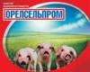 Орелсельпром