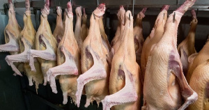 Россельхознадзор ограничил импорт птицеводческой продукции из Польши