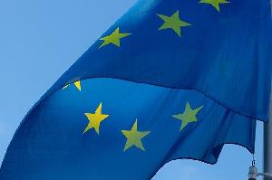 Объемы экспорта свинины из ЕС будут оставаться высокими из-за спроса из Китая