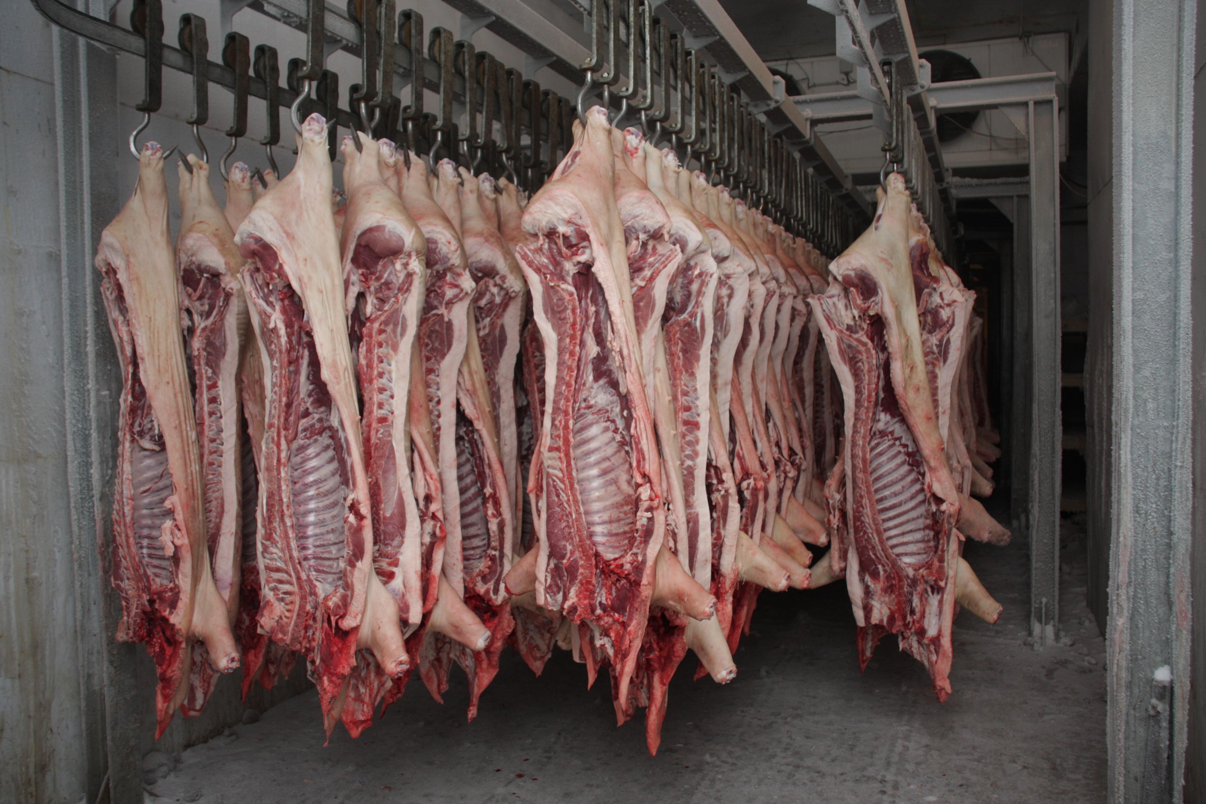 Ищите надежного поставщика свинины, говядины