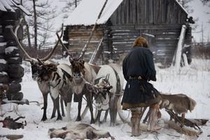 На территории Ненецкого АО стартовала убойная кампания