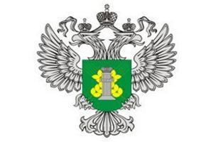 В Смоленскую область не пустили 20 тонн белорусской говядины