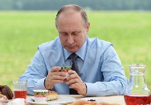 Путин поручил правительству увеличить экспорт АПК до $45 млрд к 2024 году