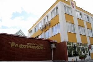 В свердловском кабмине решают судьбу самой успешной уральской птицефабрики – «Рефтинской»