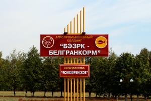 Прибыль от продаж «БЭЗРК-Белгранкорм» упала из-за цен на бройлеров