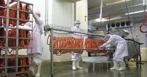 Делегация из КНДР изучит производственный процесс мясокомбината «Клинский»
