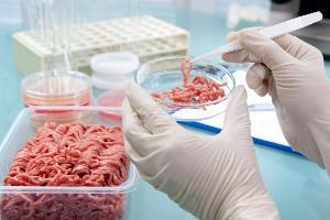 20% проб мяса и молока на Кубани и в Адыгее не соответствуют ГОСТу