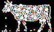 Ученые в Белгородской области разработают программу снижения риска негативного воздействия антибиотиков в животноводстве