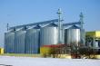 Под Новосибирском планируют построить предприятие по выпуску витаминов для животноводства