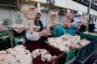 Китай ввел антидемпинговый тариф для бразильского мяса птицы