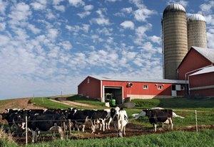 Рязанский мясокомбинат передумал отдавать имущество в счет многомиллионного долга