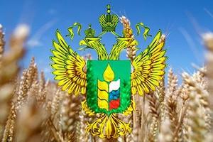 Главой Минсельхоза Приамурья станет руководитель крупной птицефабрики Олег Турков