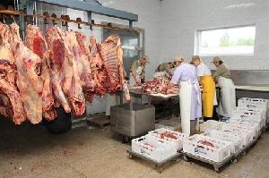 В Ивано-Франковской области построят мясоперерабатывающий завод