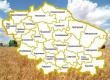 Производство мяса птицы на Ставрополье увеличилось на 24%