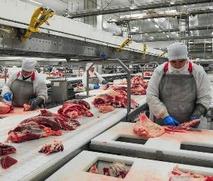 Производство рыбы, мяса и муки в Брянской области увеличилось