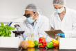 Ученые РФ получили 300 млн руб. на создание безопасных пищевых производств