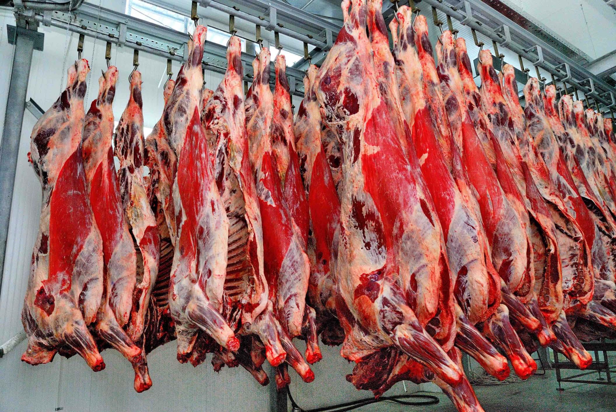 Продам мясо говядины