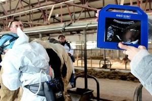 Современный аппарат УЗИ поможет следить за сахалинскими коровами