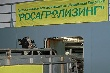 Росагролизинг завез в Татарстан крупную партию КРС