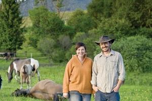 В Приангарье подведены итоги конкурса по развитию семейных животноводческих ферм