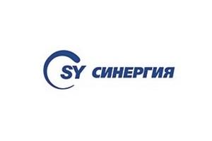 В правительстве обсуждают возможности инвестиций в ООО «Синергия»