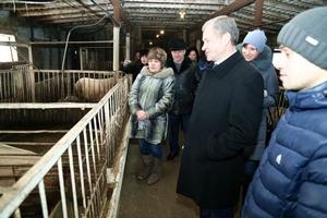 Губернатор Курганской области посетил ЛПХ, занимающееся производством свинины