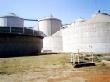 Белгородская область должна стать стартовой площадкой для внедрения биогазовой энергетики по всей России