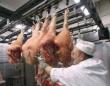 Кемеровская область в 2013г ожидает увеличения производства мяса на 3%