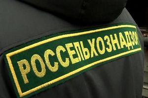 Россельхознадзор запретил четырем российским компаниям поставлять продукцию в ЕАЭС