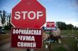 Россия ввела запрет на ввоз свинины из Южной Осетии из-за АЧС