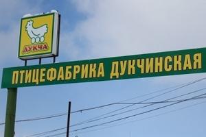 Магаданский губернатор оценил развитие местной птицефабрики