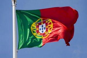 Минсельхоз РФ: Россия готова поставлять зерно на рынок Португалии
