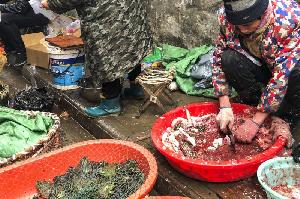 Китай: Пекин намерен запретить охоту на диких животных и продажу их мяса