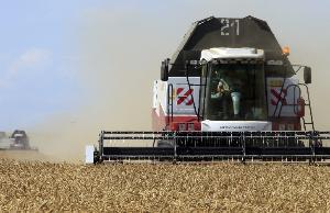Сельское хозяйство забуксовало